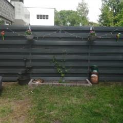 De rest van m'n tuin